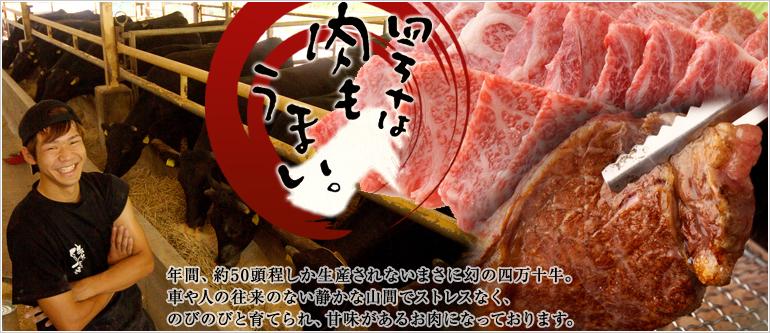 四万十は肉もうまい。