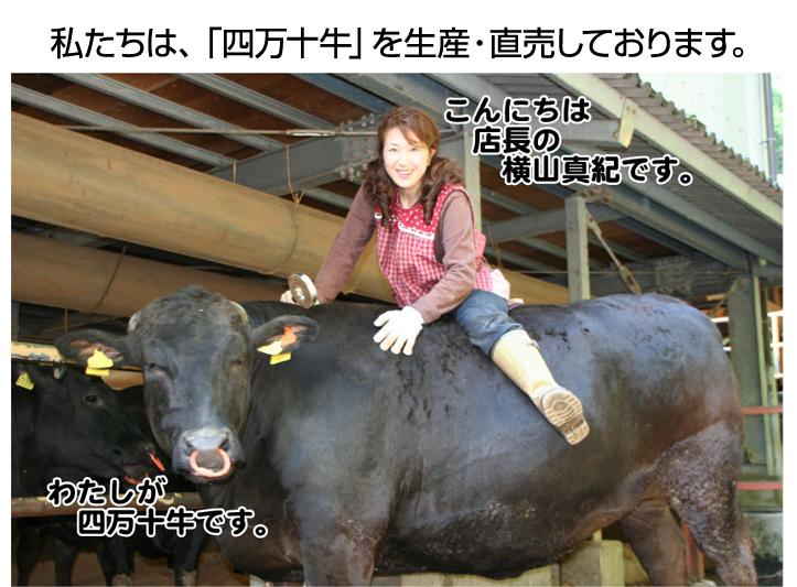 私たちは「四万十牛」を生産・販売しております。